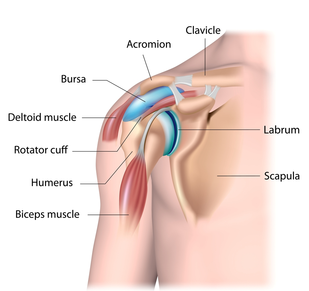 rotator-cuff-tear-shoulder-pain.jpg